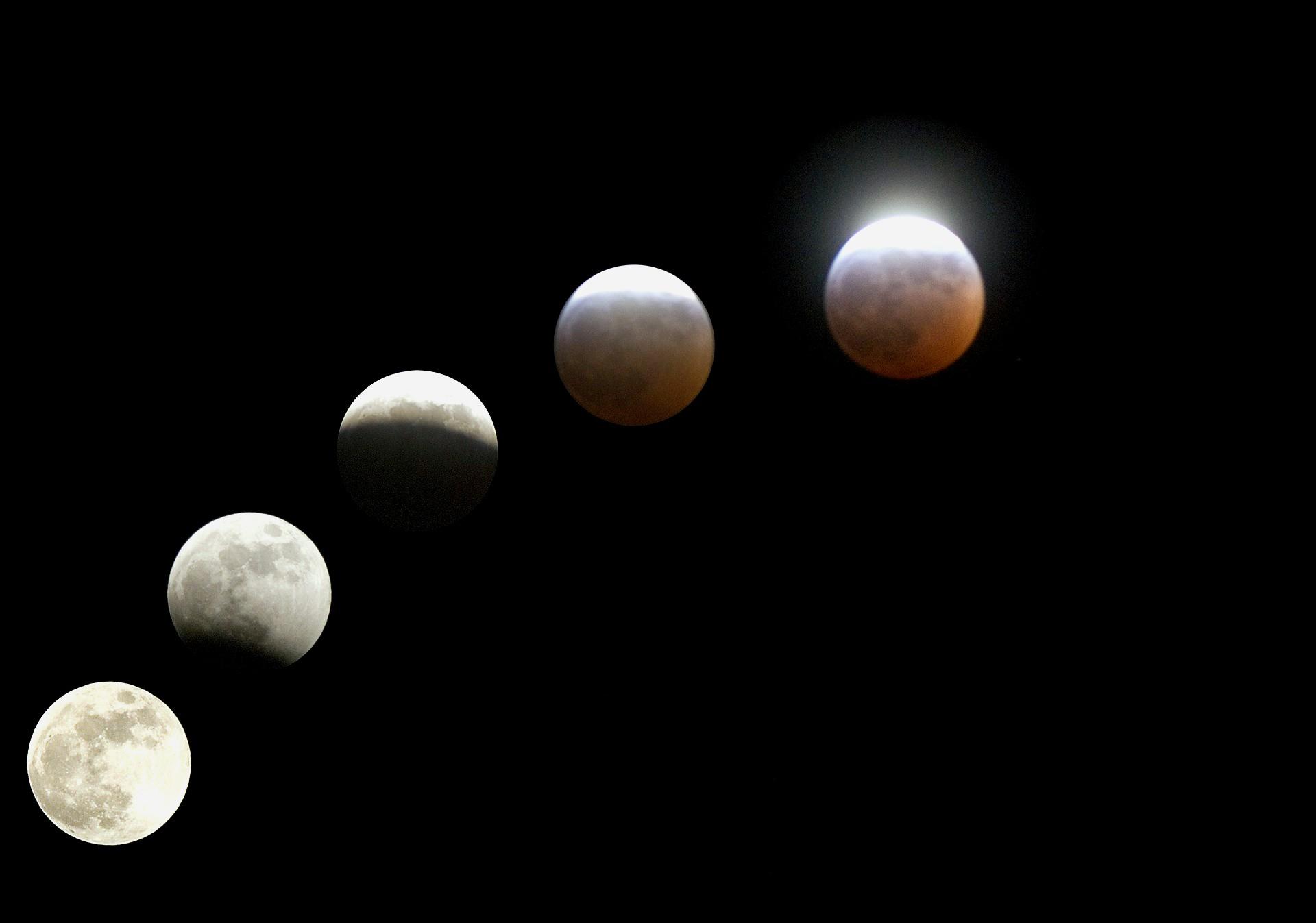 Le fasi di un eclissi parziale di Luna.